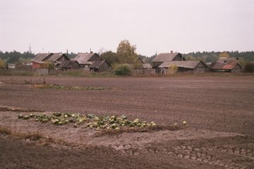 van Saratsji naar Mozyr - een lofzang - dorpje in Wit-Rusland