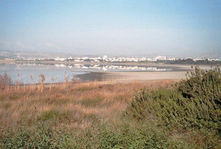 zoutmeer bij Larnaka
