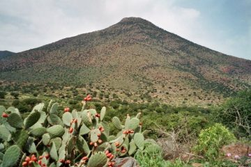 Van Tiznit naar Sidi Ifni - Onstuimig