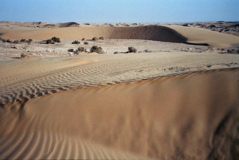 Van N'trift naar Dakhla - Zand in de Sahara