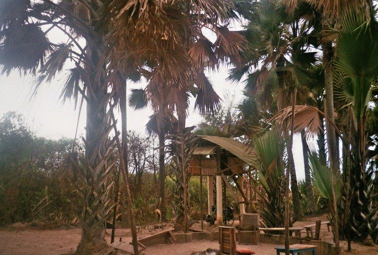Van Kotu naar Kartong - De omweg - boomhut