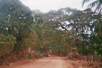Ziguinchor - Ontbrekende paspoortstempel - jungleweg in Casamanche