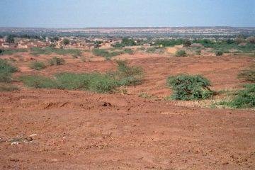 Van Kantchari naar Niamey - Bruinachtig