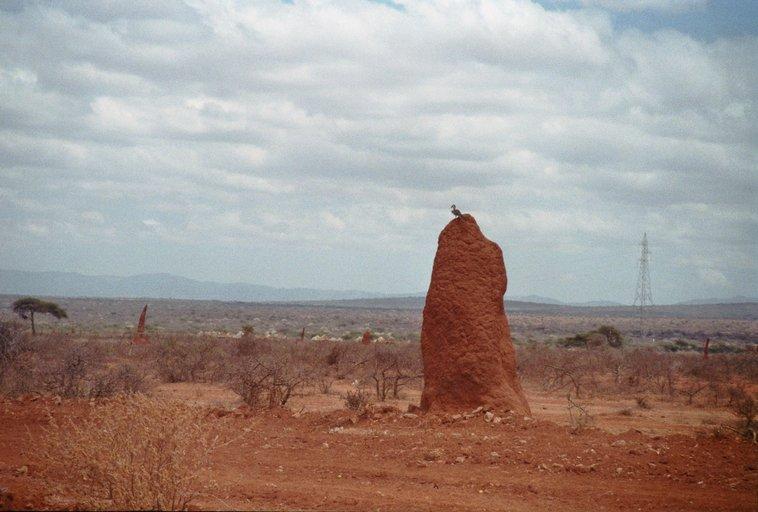 Van Yirga Chefe naar Bule Hora - Twee versnellingen - Termietenheuvel Ethiopië