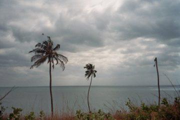 Van Moshi naar Same - Lichtgevende blubberbenen - Indische oceaan